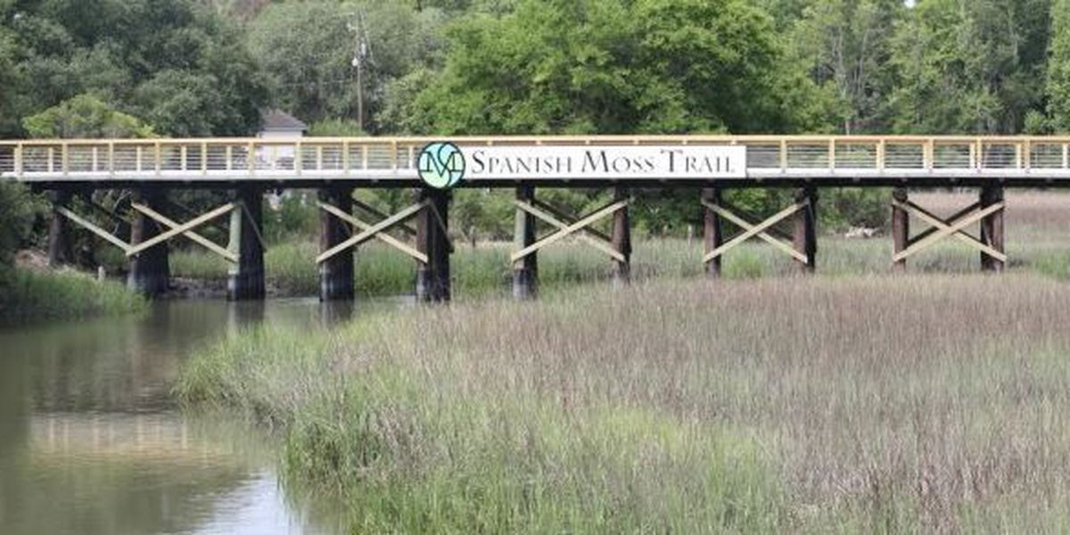 Spanish Moss Trail.2